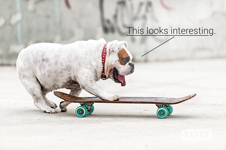 Can You Teach an Old Dog New Inbound Tricks? | Social Media Today