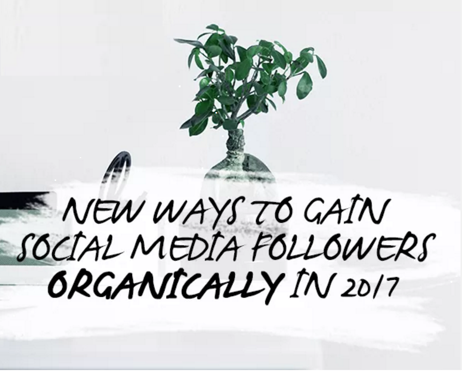 13 Ways to Grow Your Social Media Audience in 2017 | Social Media Today